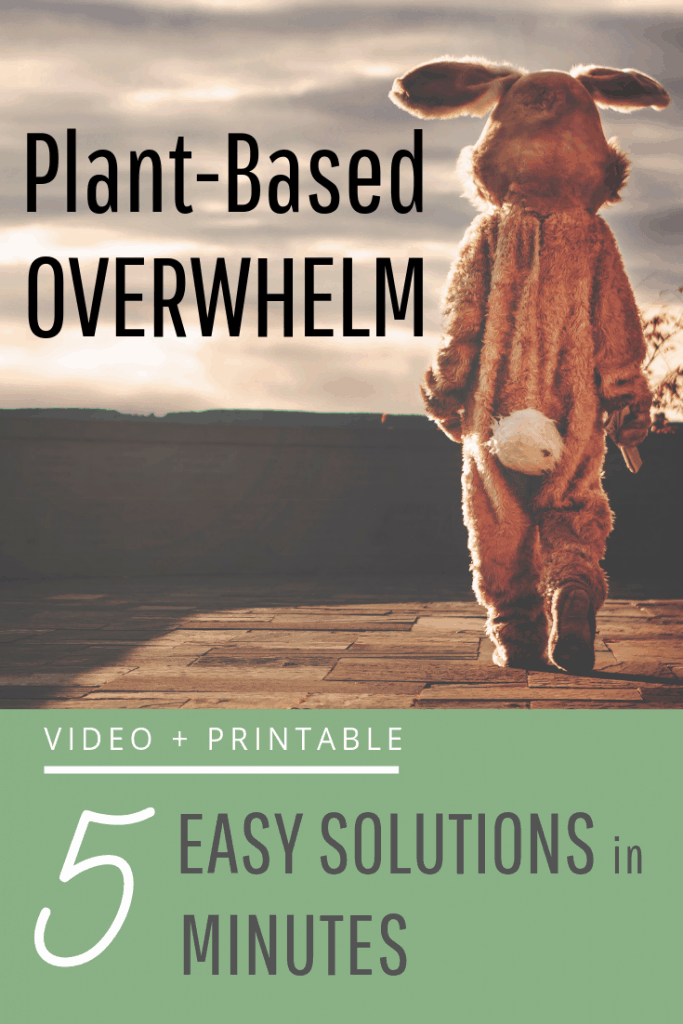 Plant-Based Overwhelm 5 Solutions with Person in a Rabbit Costume