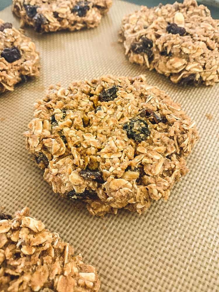 Unbaked oatmeal breakfast protein cookies on a baking mat