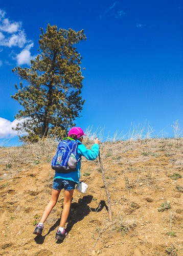 Small child hiking up a hill with a backpack